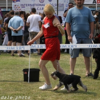 IMG_7242t (230)