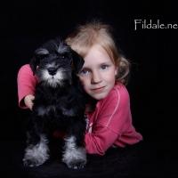 10gallery fildale_2