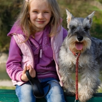 a cute toddler girl holding a schnauzer puppy dog in the park
